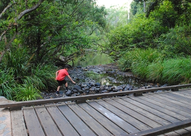 rock hopping — Little Yabba Creek