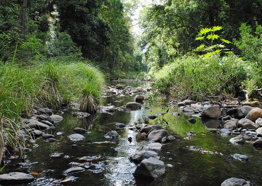 Neurum Creek