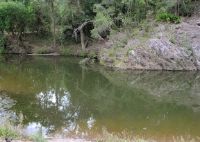 cedar grove waterhole
